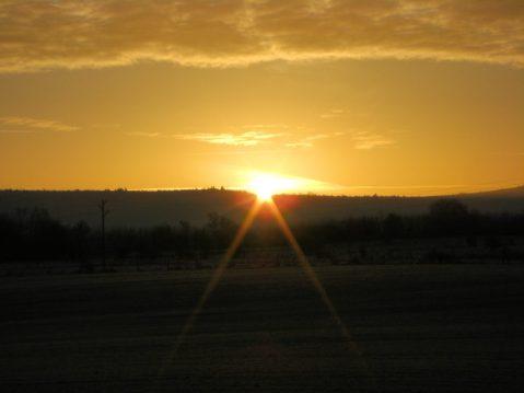 sunshine_morning-1024x768