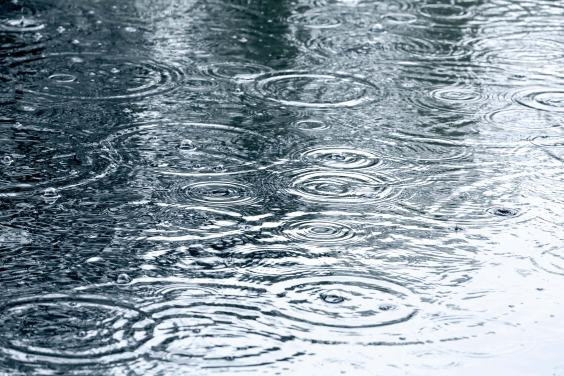 03-not-weird-facts-rain-mr_twister